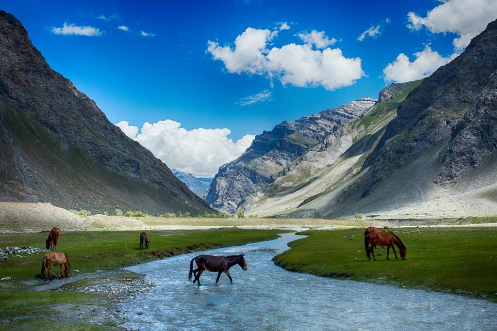 landscape--ladakh2-thumb
