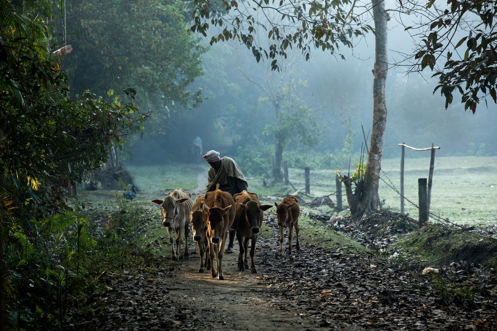 majoli-village-scene-thumb